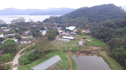 Top_view_03